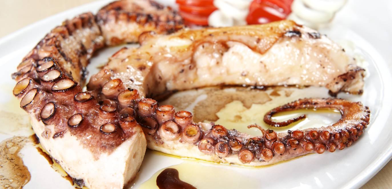 gegrillter octopus